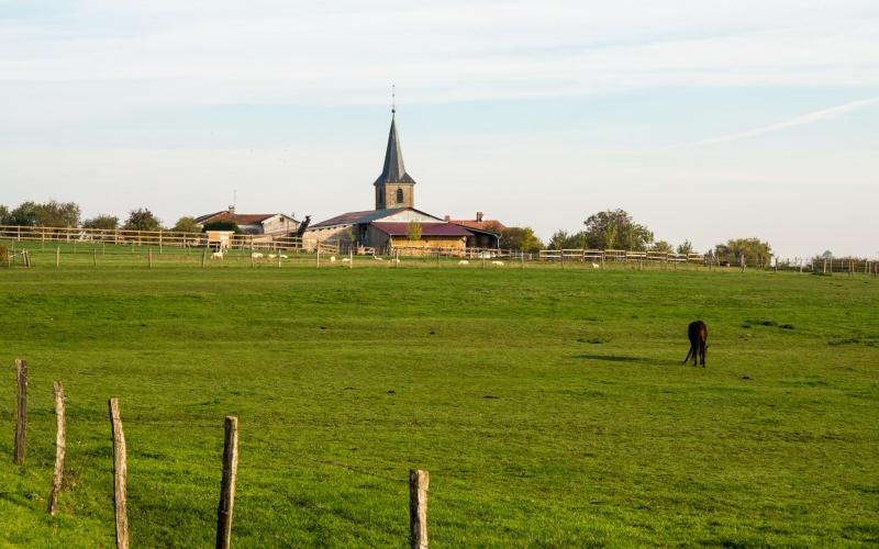 Blick zurück nach Dombrot-le-Sec