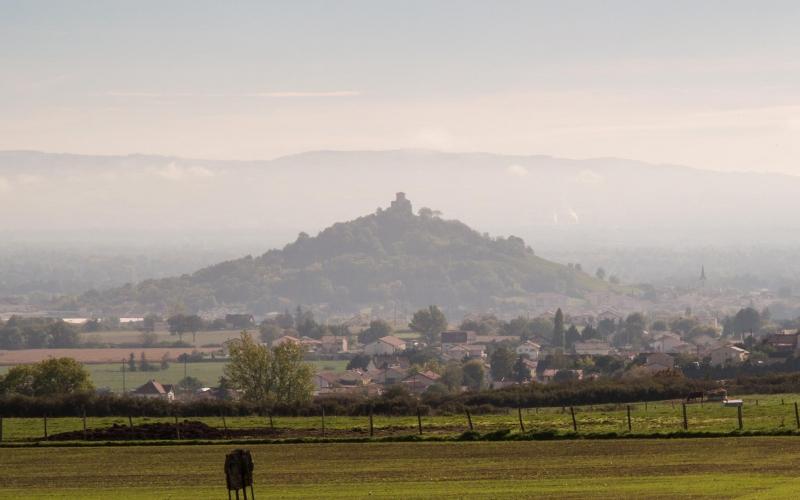 Den ganzen Morgen in der Ebene zu sehen: Saint Romain