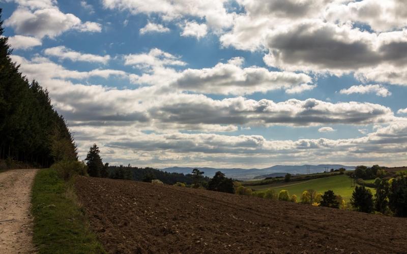 Vor dem letzten Abstieg gibt es eine schöne Aussicht: Irgendwo da hinten muß Le Puy liegen!