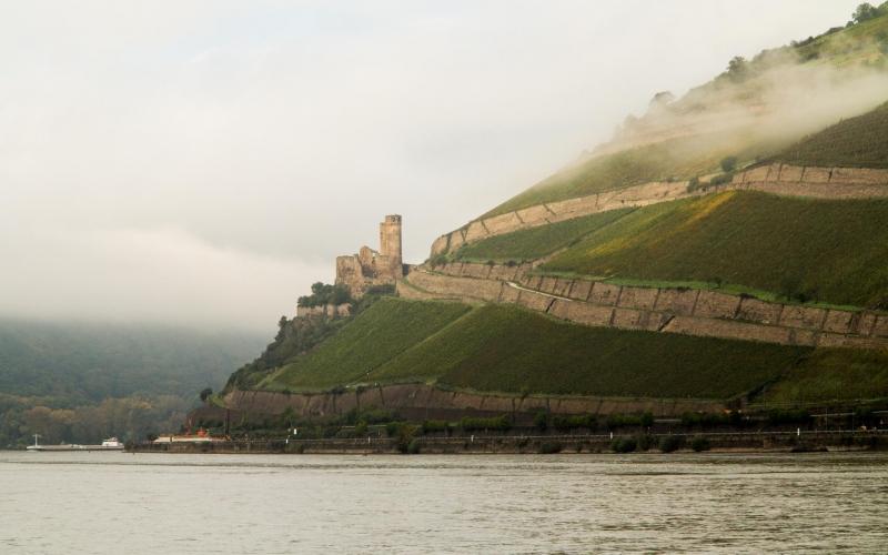 Bingen: Burg Ehrenfels paßt auch im Nebel auf, daß die Nahe-Mündung nicht verloren geht.