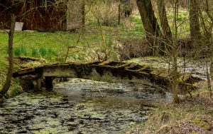 Jakobsweg Helling Gartentümpel mit morscher Brücke