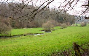 Jakobsweg Frezelle im Frühjahr