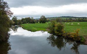Jakobsweg Cormatin Voie Verte Blick auf die Grosne Weiden