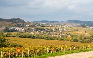 Jakobsweg Mellecey Blick in die Weinberge