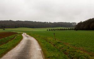 Jakobsweg Darney aux Chenes Panorama