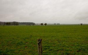Jakobsweg Darney aux Chenes Weideland Panorama