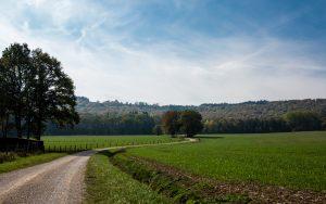 Jakobsweg Feld bei Aureil Maison
