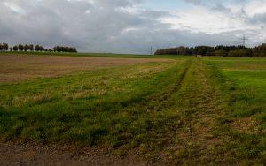 Jakobsweg Hunsrück: Durch die Felder bei Kirchberg