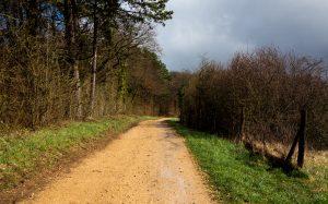 Jakobsweg Jezainville Weg am Waldrand in der Sonne