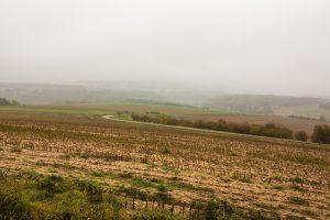 Jakobsweg Lamargeleee aux Bois blick über die kahlen Felder