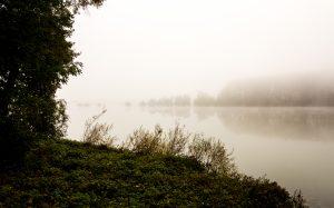 Jakobsweg: Rhein bei Ingelheim Herbststimmung flussabwärts
