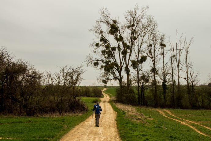 Jakobsweg Wanderer bei Kerling lès Sierck