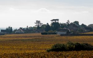 Jakobsweg Fixey Panorama mit Zedern