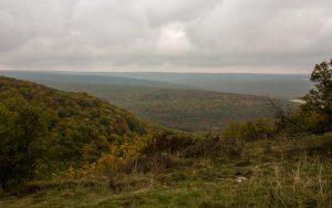 Jakobsweg Saussy Panorama Wald