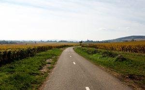 Jakobsweg Volnay Panorama Radweg durch die Weinberge im Herbst