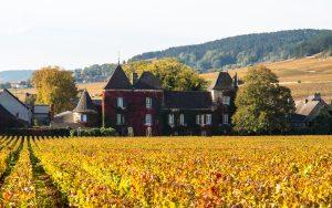 Jakobsweg Volnay Weingut mit Herbstlaub