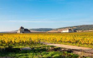 Jakobsweg Vougeot Weingüter im Herbst Panorama