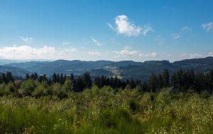 Jakobsweg nähe Le Suchet Panorama