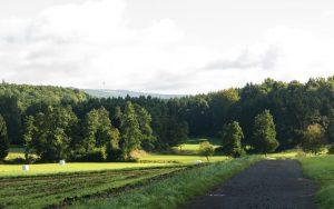 Bonifatius-Route Steinberg Blick auf den Hoherodskopf
