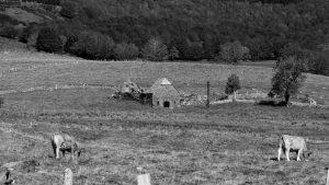 Jakobsweg Aubrac verlassener Hof schwarz weiss