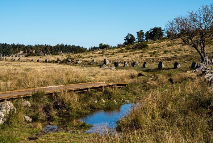 Jakobsweg Aubrac Weg mit Steinen markiert
