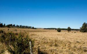 Jakobsweg Aubrac wildes Panorama