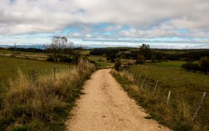 Jakobsweg durch die Margeride