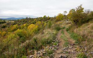 Jakobsweg Le Puy-en-Velay rustikaler Weg