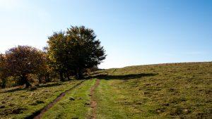 Jakobsweg Aubrac Pasqualet Weg über die Weiden