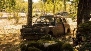 Jakobsweg Grealou Autowrack im Wald