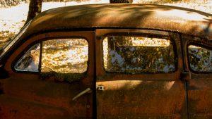 Jakobsweg Grealou Autowrack im Wald Detail Fenster